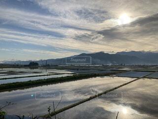 風景,水面,朝焼け,田園