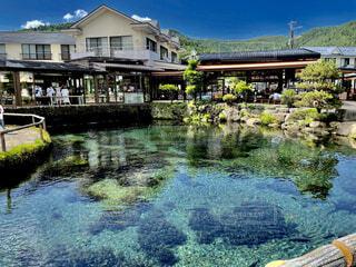自然,建物,屋外,晴れ,透明,水面,池,景色,草,家,古い,歴史,青い,草木,美