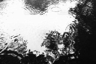 自然,屋外,水面,絵画,スケッチ,図面,黒と白