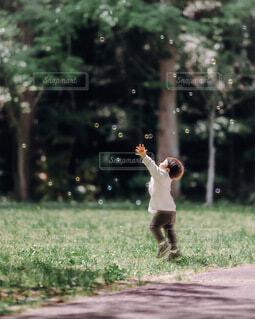 森,緑,子供,シャボン玉,キラキラ,男の子