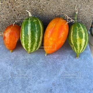 自然,植物,オレンジ,可愛い,ミドリ,カラスウリ,ウリ,烏瓜,銀河鉄道の夜,スイカみたい,ハロウィンみたい