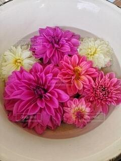 風景,花,ピンク,白,花束,綺麗,花瓶,フラワー,花びら,テーブル,皿,flower,草木,ブルーム