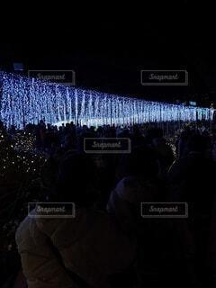 風景,冬,絶景,群衆,屋外,青,暗い,光,イルミネーション,人物,人,ブルー,足利,フラワーパーク,藤の木