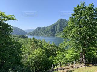 自然,空,屋外,湖,水面,山,樹木,草木