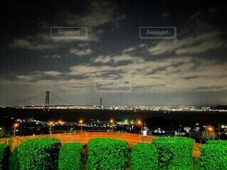 風景,夜,橋,夜景,絶景,緑