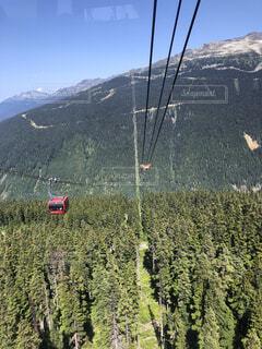 森林,屋外,山,高原,カナダ,ウィスラー