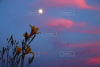 背景にオレンジ色の夕日の写真・画像素材[4790538]