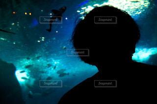 青,水族館,暗い,ぼかし,明るい,景観