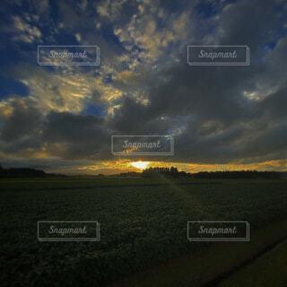 自然,風景,空,屋外,雲,夕暮れ,草,樹木