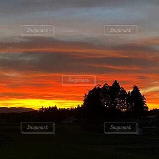 自然,風景,空,屋外,太陽,雲,夕暮れ,樹木,日の出,設定