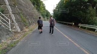風景,屋外,歩く,道路,樹木,人物,道,人,歩道,通り,履物