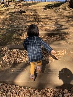 ずんずん進む 秋の散歩の写真・画像素材[4813212]