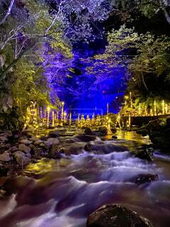 自然,夜,絶景,屋外,川,水面,滝,樹木,イルミネーション,ライトアップ,明るい