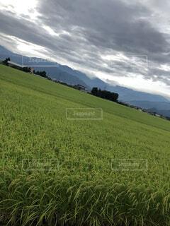 自然,風景,空,屋外,緑,草原,雲,山,景色,草,丘,樹木,草木,ファーム