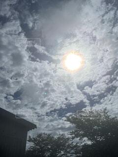 空,屋外,太陽,雲,朝,たまたま