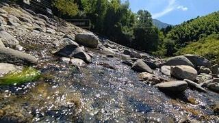 自然,屋外,川,水面,山,樹木,岩,静岡,興津川