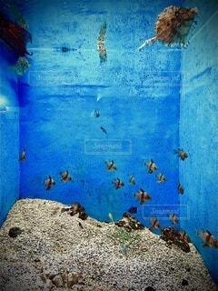 風景,青,壁,絵画,子供の芸術