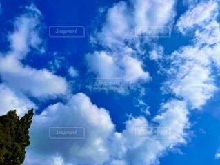 青い空白い雲の写真・画像素材[4838229]