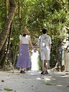 カップル,屋外,散歩,手繋ぎ,仲良し,樹木,麦わら帽子,草木