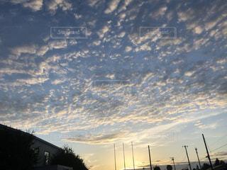 空,屋外,雲,朝,早朝