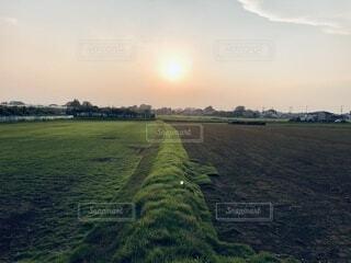 自然,風景,空,夕日,屋外,緑,雲,夕方,田舎,景色,日常,草,樹木,土