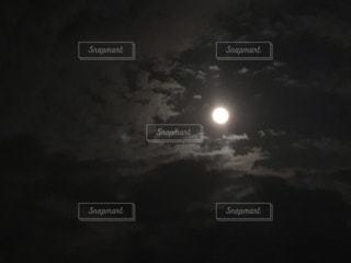 月夜の写真・画像素材[1685942]