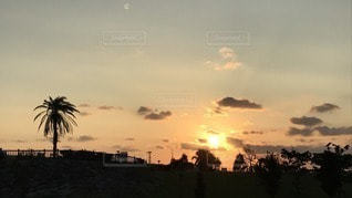 空,太陽,夕焼け,夕暮れ,光