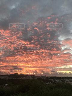 自然,風景,空,太陽,朝日,雲,オレンジ,朝焼け,日の出