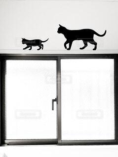 猫,屋内,窓,シルエット,黒猫,ウォールステッカー,窓枠,壁紙シール