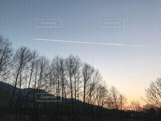 自然,風景,花,絶景,白,夕暮れ,山,鮮やか,木々,飛行機雲,ドイツ,草木,休暇,南ドイツ