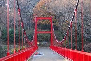 橋,屋外,赤,雨上がり