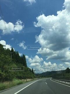 空,屋外,白,雲,樹木,くもり