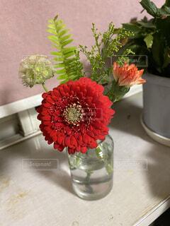 花,屋内,赤,花束,花瓶,バラ,薔薇,テーブル,植木鉢,観葉植物,花柄,草木
