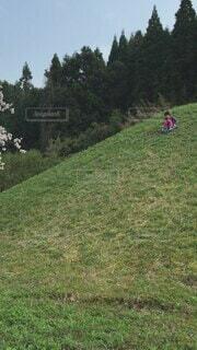 空,屋外,緑,かわいい,景色,草,樹木,オシャレ,可愛い,ハイキング,お洒落,おしゃれ
