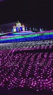 かわいい,紫,イルミネーション,オシャレ,可愛い,明るい,お洒落,おしゃれ,赤紫色,バイオレット