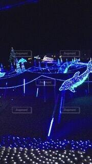 風景,夜,かわいい,暗い,イルミネーション,オシャレ,クリスマス,可愛い,明るい,お洒落,ステージ,おしゃれ