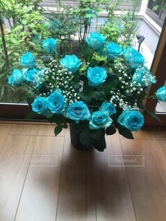 花,屋内,バラ,薔薇,床,ガーデン