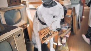 犬の置物の写真・画像素材[4815873]