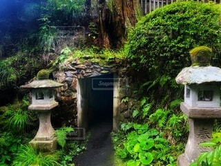 風景,緑,神社,景色,苔,岩,洞窟,石,穴,石垣,深緑,岩穴