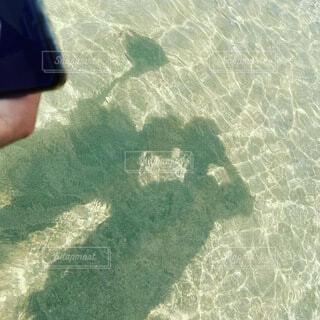 海,屋外,ビーチ,水面,泳ぐ,人物,人,マリンスポーツ