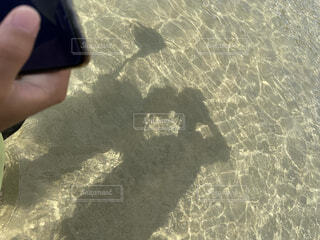 屋外,ビーチ,水面,人物,人