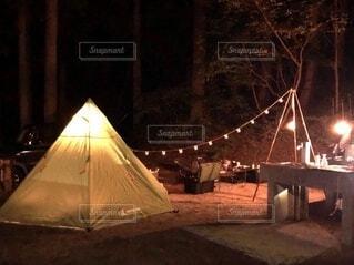 夜,傘,樹木,テント