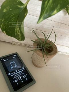 音楽,観葉植物,ナチュラル,グリーン,草木,ウォークマン,自分の時間,ホワイトナチュラル