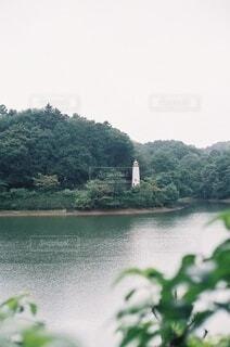 自然,空,屋外,湖,水面,樹木,草木
