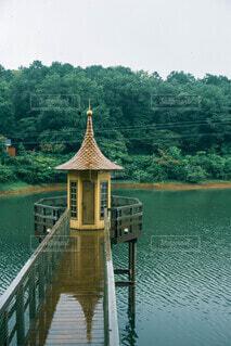 空,屋外,湖,神社,水面,樹木,寺
