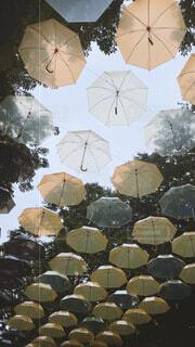 アクセサリー,傘,テント