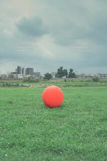 屋外,景色,草,サッカー,遊び場