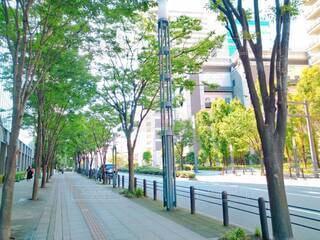 空,建物,屋外,樹木,都会,道,歩道,通り