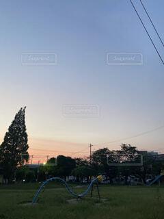 自然,公園,夏,綺麗,夕暮れ,日常,夕陽,エモい
