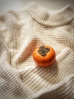セータと柿の写真・画像素材[3893343]